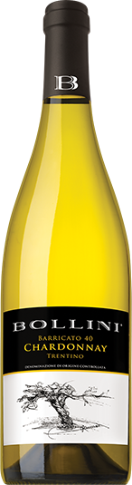 Chardonnay, Bollini 'Barricato 40' Trentino