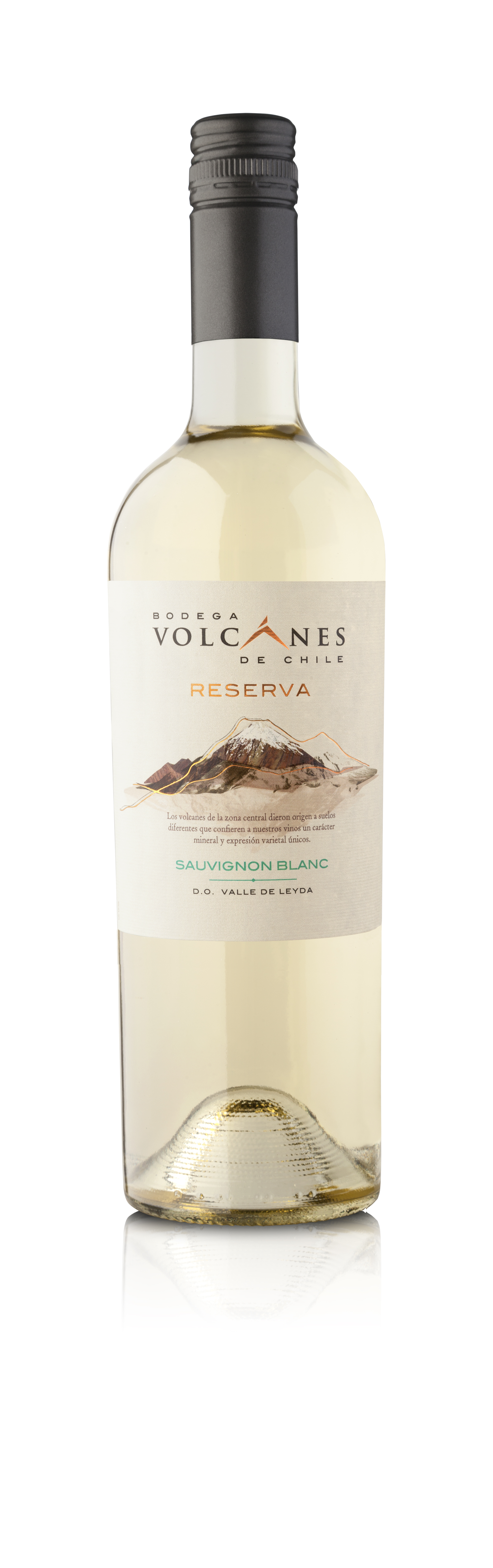 Reserva Sauvignon Blanc