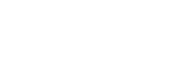 FEM Zurich Chapter Meeting 2019
