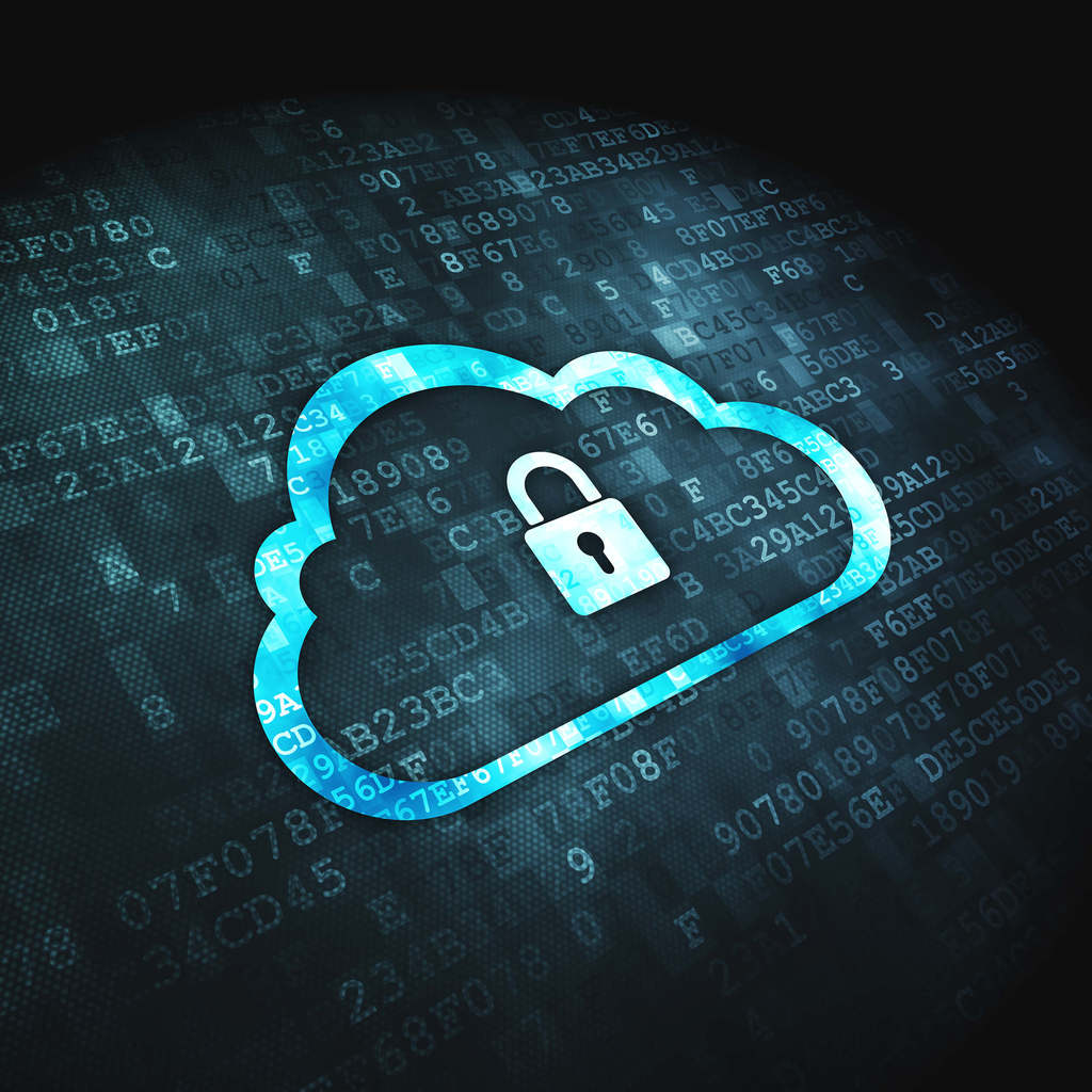 Tackling security in the public and private cloud