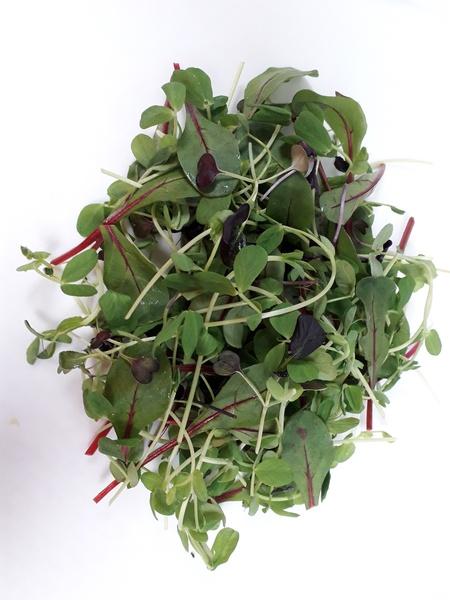 Asda Extra Special Pea Shoots, Red Chard, Red Pak Choi & Purple Radish Salad, PDM Produce UK