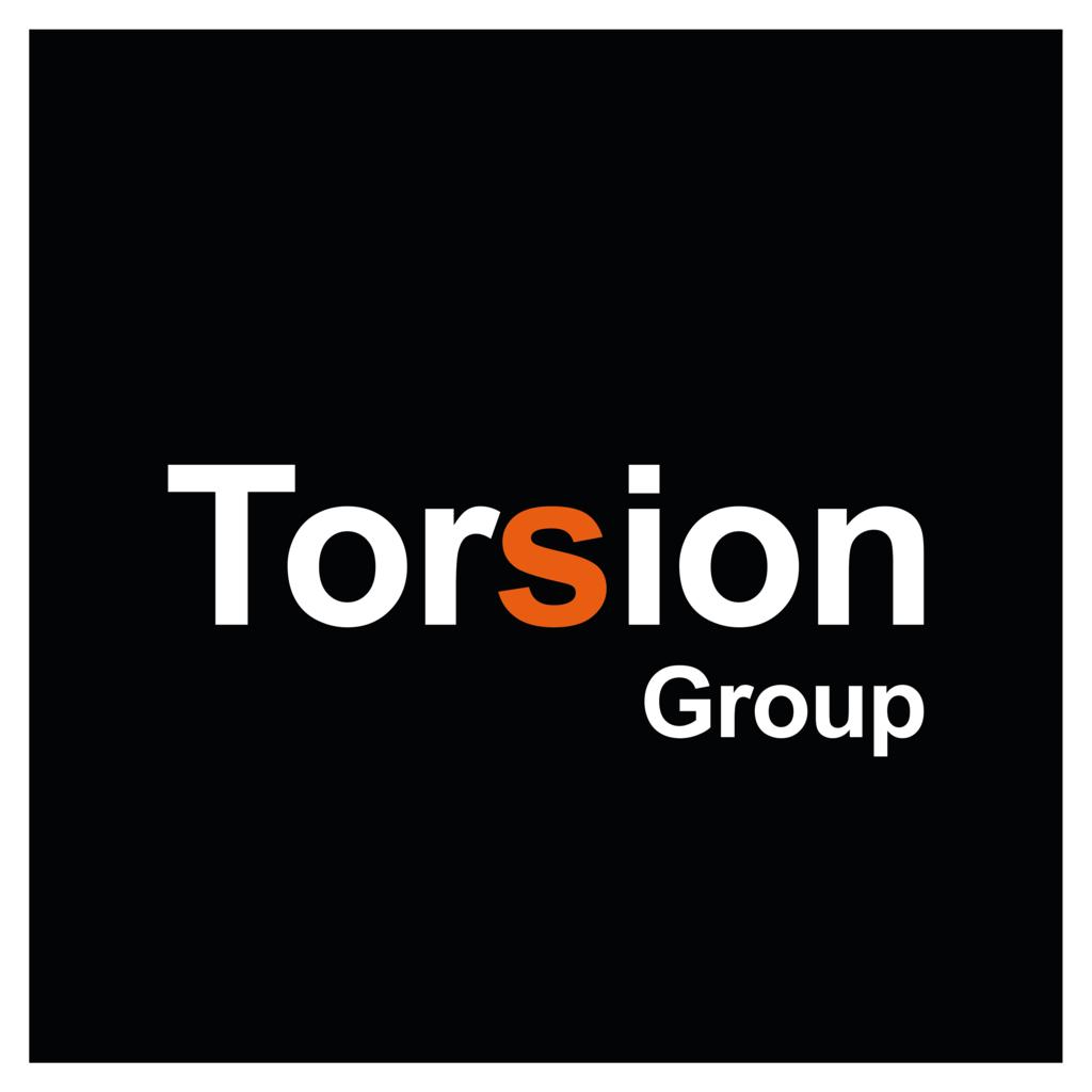 Torsion Group