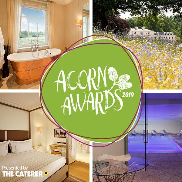Acorn Awards 2019