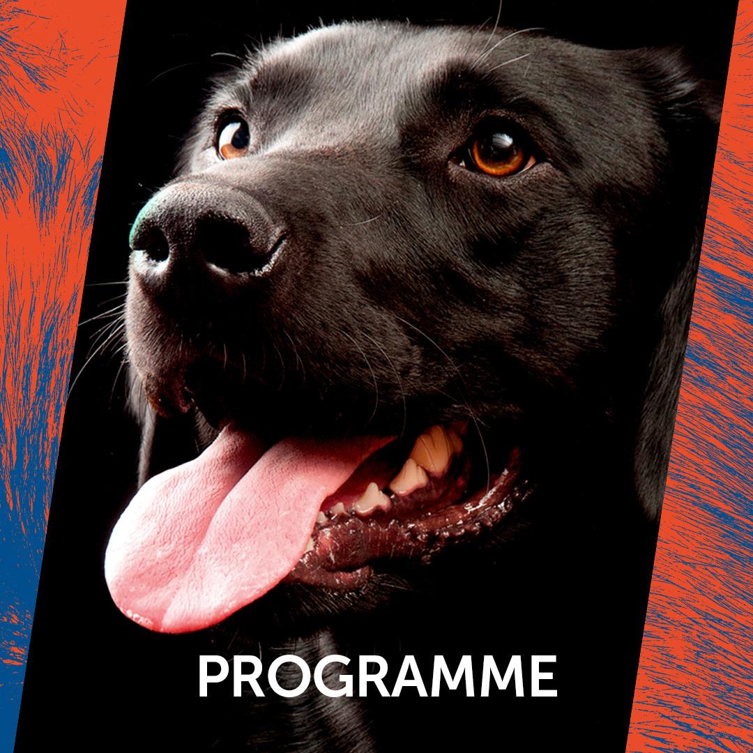 Quick link panel: programme